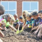 Growing healthy minds