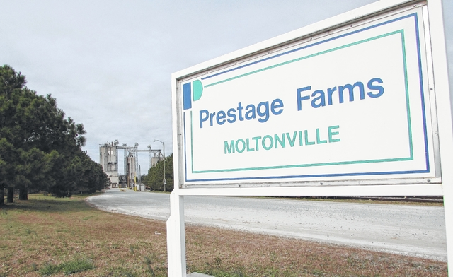 Prestage eyes expansion | Sampson Independent